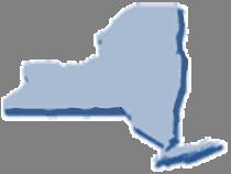 New york next generation science standards new york graphic ibookread PDF